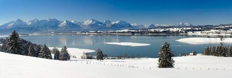 全景风景在巴伐利亚在冬天 免版税库存图片