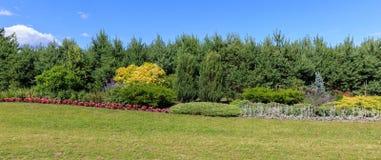 全景风景有许多的花园五颜六色的绽放和杉木 地区莫斯科一幅全景 Dailas rozes 图库摄影