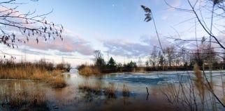 全景,风景在早期的春天 免版税库存图片