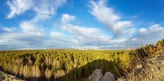 全景从小山到森林,乌拉尔, 免版税库存照片