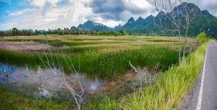 全景300 yod泰国看法  库存照片