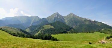 全景Belianske Tatry,斯洛伐克,欧洲 免版税库存照片
