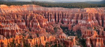 全景bryce的峡谷 免版税图库摄影