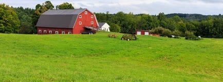 全景Idyllc的农场 免版税图库摄影