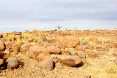全景kokerboom巨人操场,基特曼斯胡普,纳米比亚 免版税库存照片