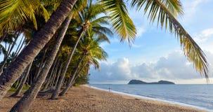 全景os棕榈小海湾在日出昆士兰Aus的海岸 免版税图库摄影
