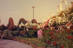 全景sunsetting的视图在奇迹庭院里 免版税库存照片