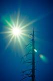 全球性变暖作用 库存照片