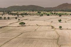全球性变暖,死了和在干旱的季节,看法的破裂的土壤  免版税库存图片