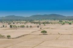 全球性变暖,死了和在干旱的季节,看法的破裂的土壤  免版税库存照片