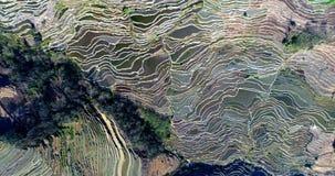 全球性地重要农业遗产系统 免版税库存图片