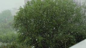 全球性气候变化 夏天雪 影视素材