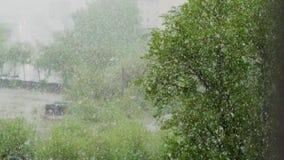 全球性气候变化 夏天雪 股票录像