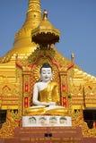 全球性Vipassana塔 在Gorai附近的凝思霍尔,在孟买西北部 免版税库存图片