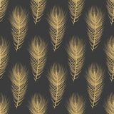全身羽毛自然精妙的样式 免版税图库摄影