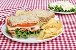 全部做面包的粮谷健康三明治的火鸡 免版税库存照片