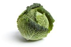 全部圆白菜新鲜的绿色一的开胃菜 库存照片