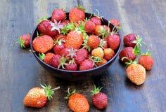 全部在圆的碗的成熟开胃草莓在葡萄酒木桌特写镜头 免版税库存照片