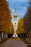 全部宫殿peterhof 免版税图库摄影