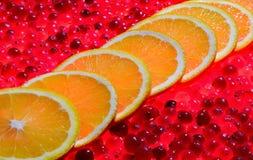 全部对蔓越桔的橙色切片 库存照片
