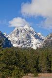 全部山国家公园积雪覆盖的teton 图库摄影