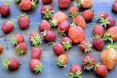 全部成熟开胃草莓在老葡萄酒木背景顶视图特写镜头驱散了 库存图片