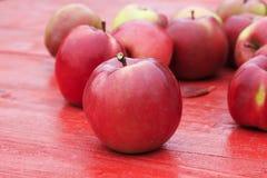 全部成熟红色苹果在五颜六色的槭树l的一张木桌上说谎 库存照片