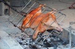 全部猪的烘烤 库存照片