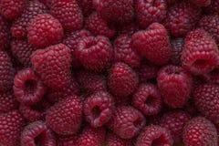 全部的背景水多的莓 背景概念框架沙子贝壳夏天 免版税库存图片