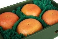 全部配件箱的葡萄柚 免版税库存图片