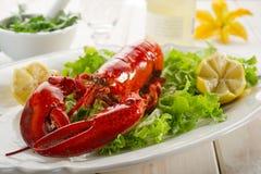 全部龙虾的沙拉 免版税库存图片