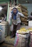 10 1986 2007 2011全部,因为baha德里房子我开始了印第安已知的莲花母亲新的11月人员服务次大陆寺庙崇拜 库存图片