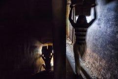 10 1986 2007 2011全部,因为baha德里房子我开始了印第安已知的莲花母亲新的11月人员服务次大陆寺庙崇拜 免版税库存照片