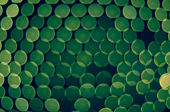 全部绿色被弄脏的光 免版税图库摄影