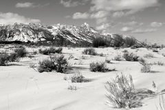 全部Tetons,全部teton国家公园,怀俄明 免版税库存照片