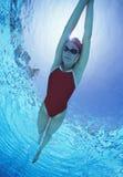 全长女性游泳者在有胳膊的美国提高了在水池的泳装游泳 库存图片