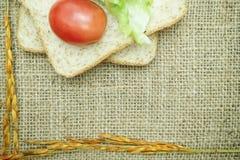 全麦面包用蕃茄和沙拉在麻袋布 免版税图库摄影