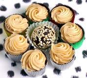八专属巧克力甜点 与芝麻籽的糖果 甜 免版税图库摄影