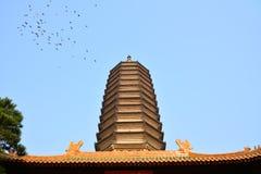 八大处北京公园 库存图片