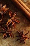 八角茴香和肉桂条 库存照片