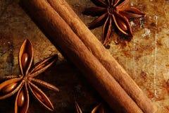 八角茴香和肉桂条 免版税库存照片