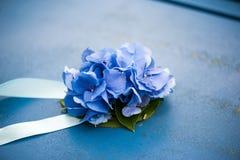 八仙花属的装饰在蓝色丝带的金属纹理的 免版税库存照片