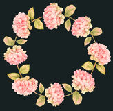 八仙花属花卉花圈 免版税库存照片