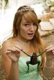 公主和青蛙 免版税库存图片