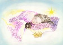 公主 免版税库存照片