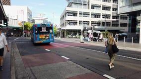 公共交通工具公共汽车,邦迪区连接点,悉尼,澳大利亚 影视素材