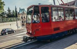 公共交通工具在贝尔格莱德 库存图片