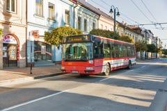 公共交通工具在Presov老镇,斯洛伐克 库存照片
