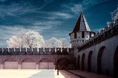 公共场所,图拉克里姆林宫 免版税库存照片