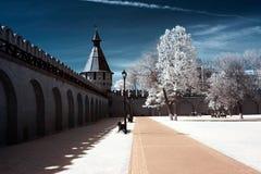 公共场所,图拉克里姆林宫 免版税库存图片